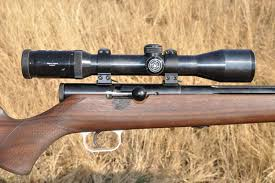 Muzzleloader Gun