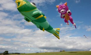 cat and fish kite